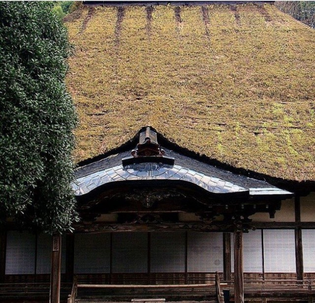 Japan, Japanese, shrine, tradition, traditional, historical, nature